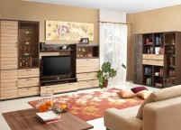 Мебель в зал - 14
