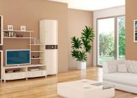 Мебель в гостиную - 156