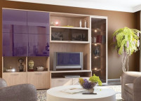 Мебель в гостиную - 159
