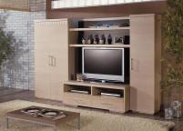 Мебель в гостиную - 8