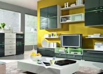 Мебель в гостиную - 81